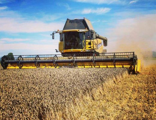 yellow new holland combine harvester in new zealand