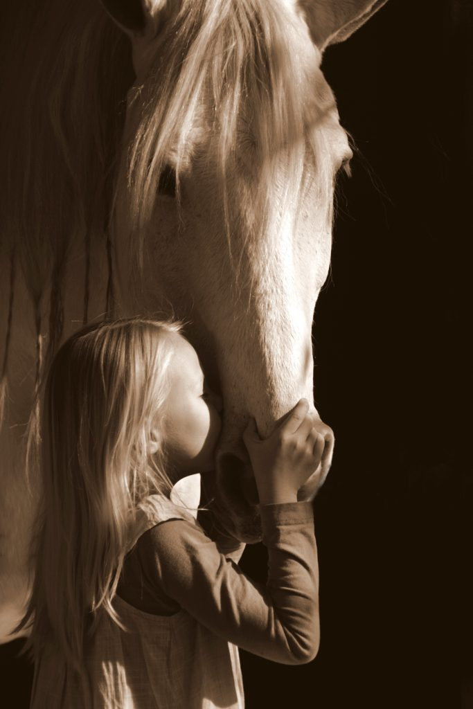 little girl kissing big grey horse on nose