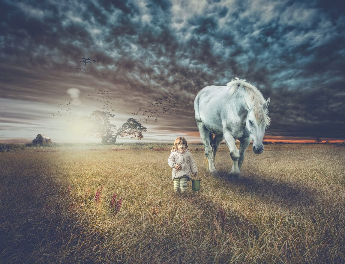 little girl walking beside big grey horse as sun sets